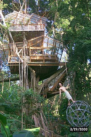 Five Tree Houses From Around The World That You Could Live
